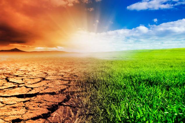 Ученый предупредил о глобальном изменении климата