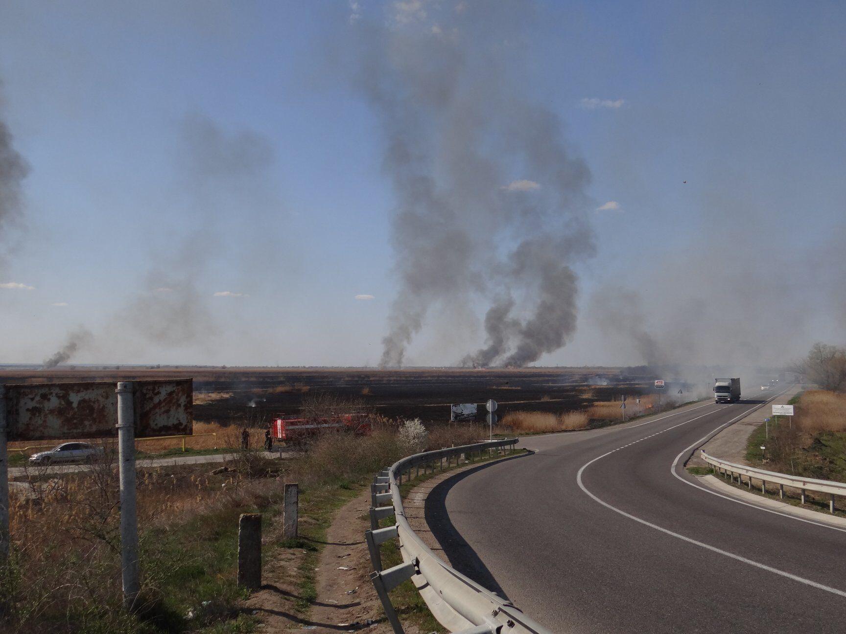 В Одесской области выгорел природный парк