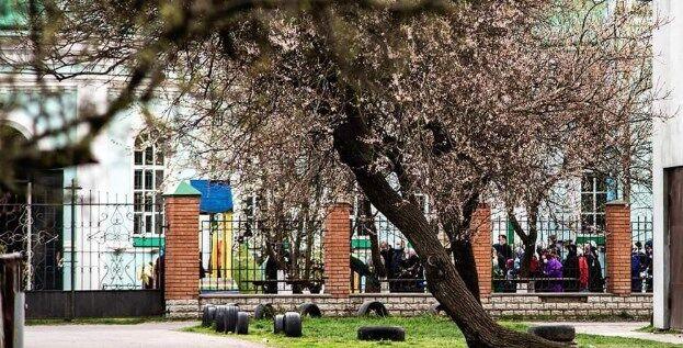УПЦ МП ''забила'' на карантин и провела массовое освящение вербы. Фото и видео
