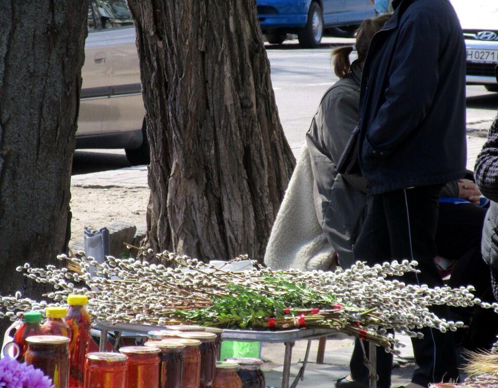 Продажа вербы в Одессе