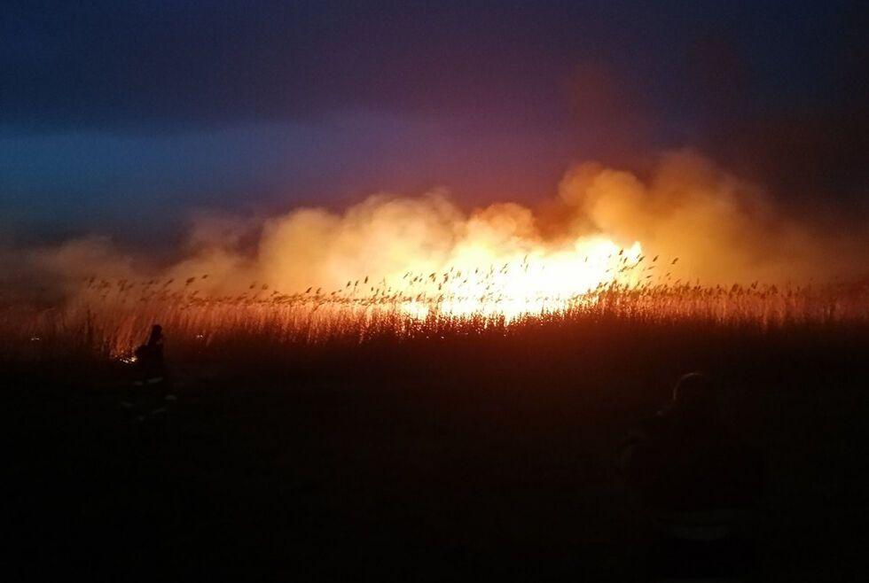 Пожары на Днепропетровщине