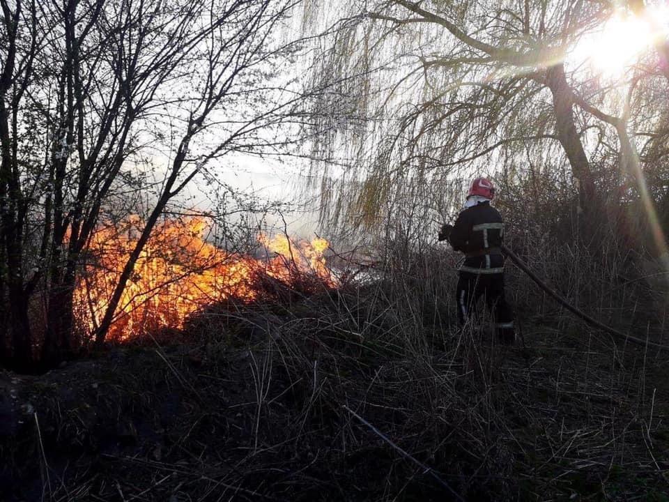 Під Тернополем загорівся заповідник: перші подробиці та фото