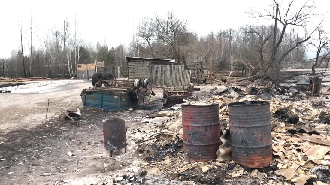 Наслідки пожеж на Житомирщині