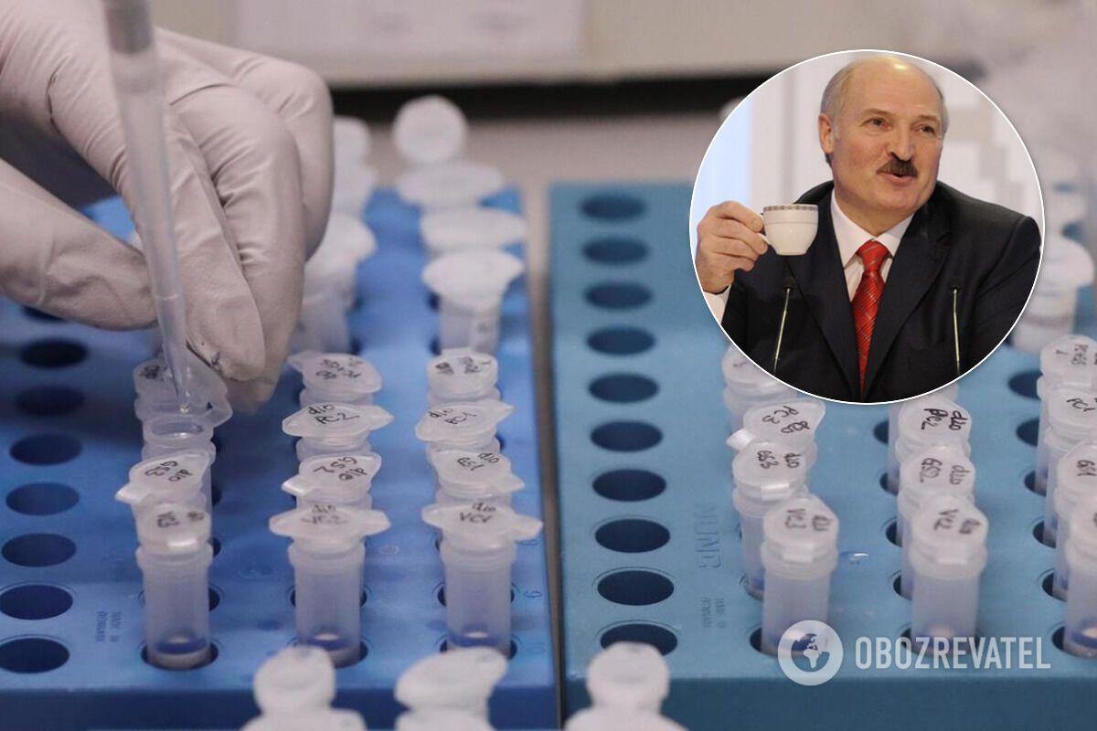 """""""Он живой человек, он бравирует на хоккейной площадке, но по жизни Лукашенко человек трусоватый"""""""