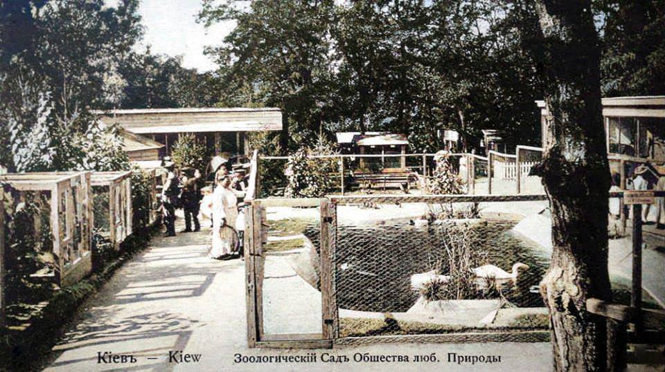 Зоопарк в Києві