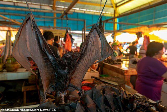 В Индонезии нашли рынок с дикими животными