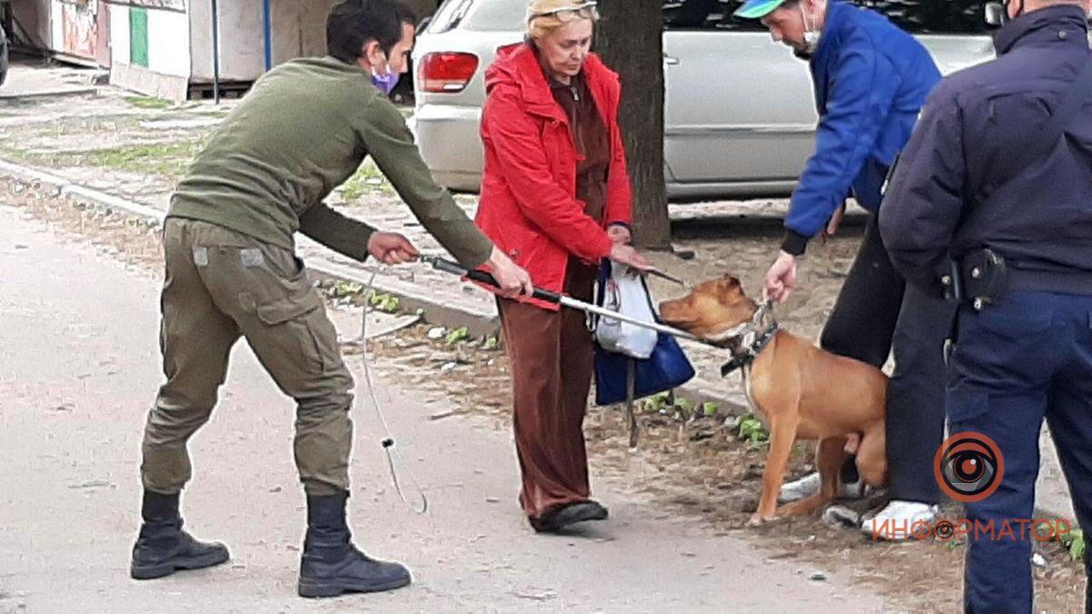 В Днепре собака покусала 11-летнего мальчика и полицейского