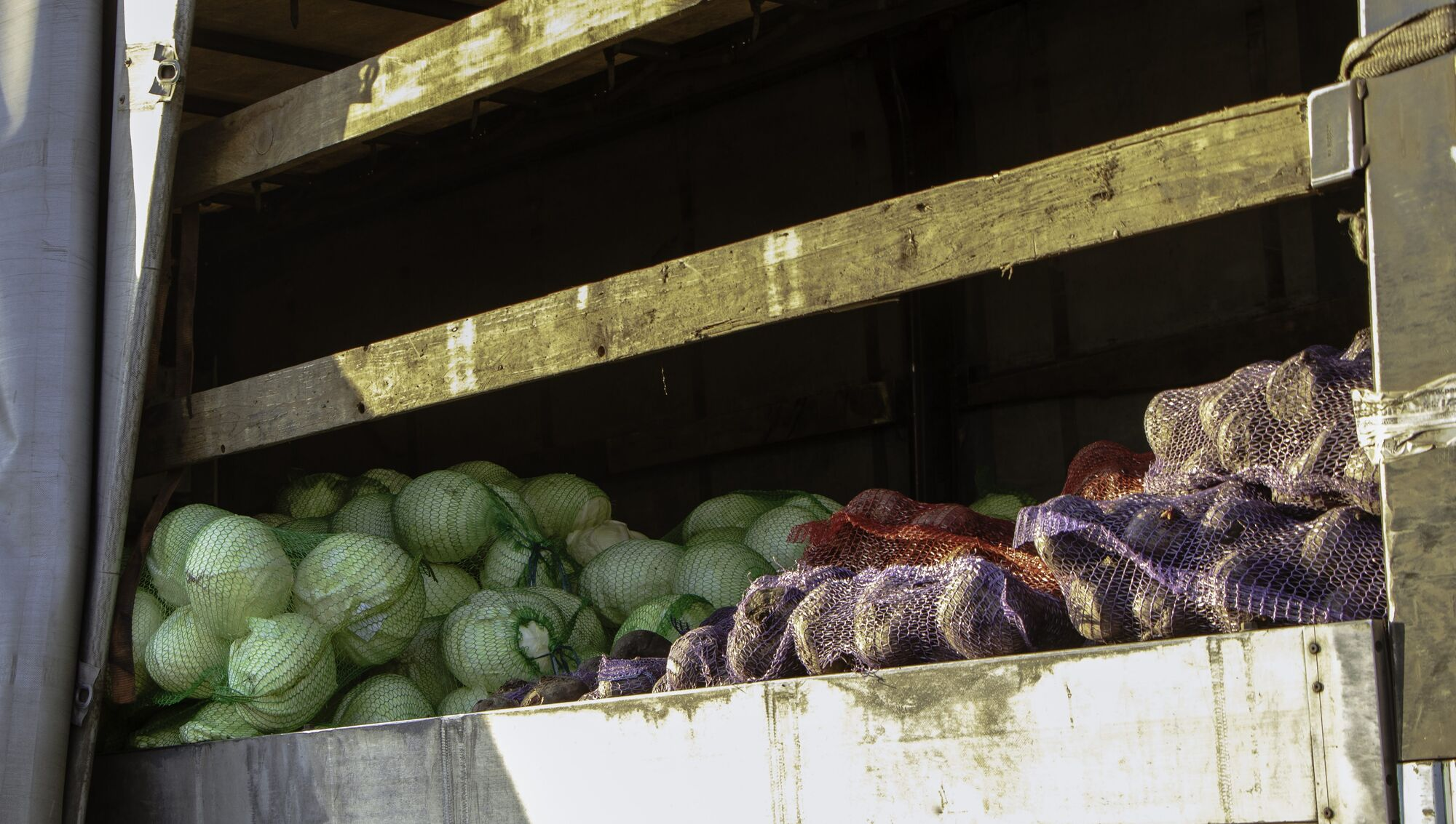 У Дніпрі понад 7 тисяч містян отримають овочеві набори