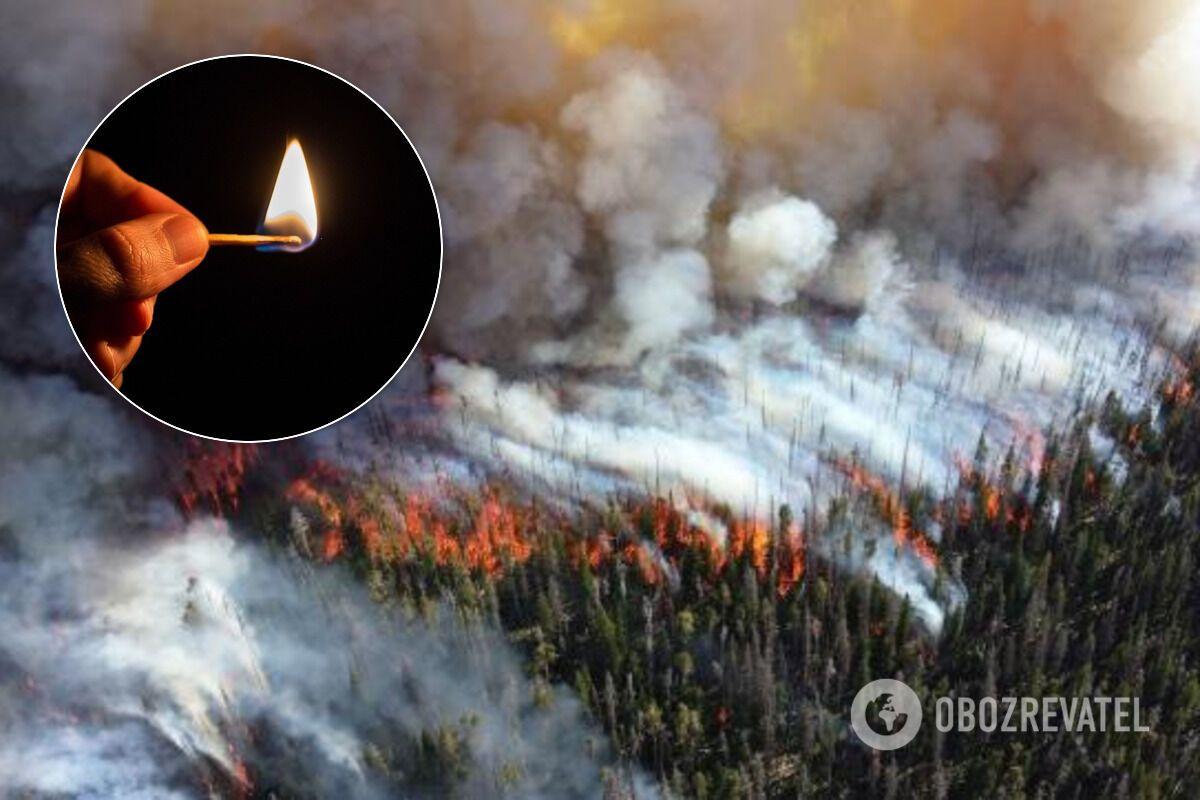 За підпали в Чорнобильській зоні необхідно жорстко карати, сказав еколог