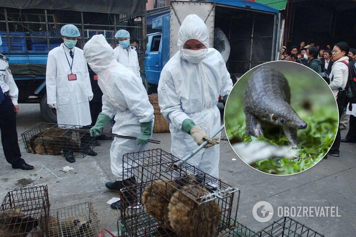 Коронавирус – не последняя пандемия: ученые дали пугающий прогноз человечеству