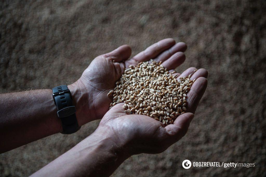 Зерно из Украины продолжают вывозить