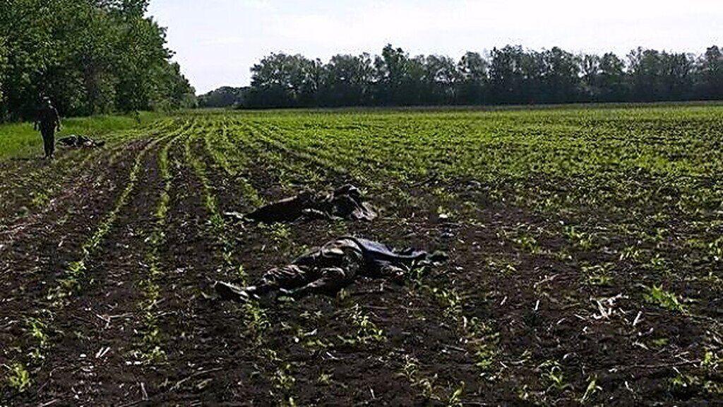 Після нападу на блокпост 51 бригади під Волновахою загинули 17 військовослужбовців