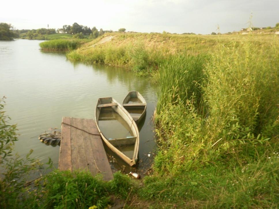 Пруд в Новоселице
