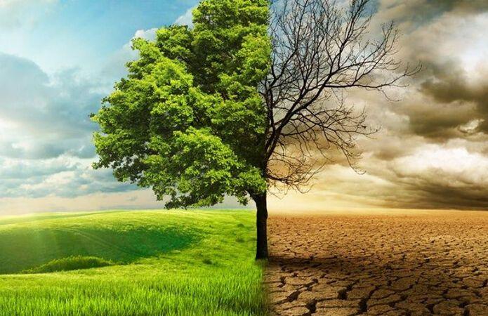 Изменение климата в мире