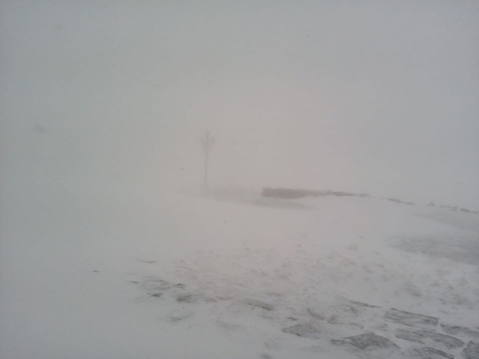 Карпати замело снігом 31 травня