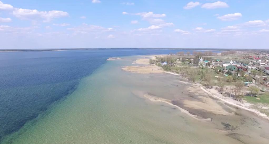 Озеро Світязь міліє