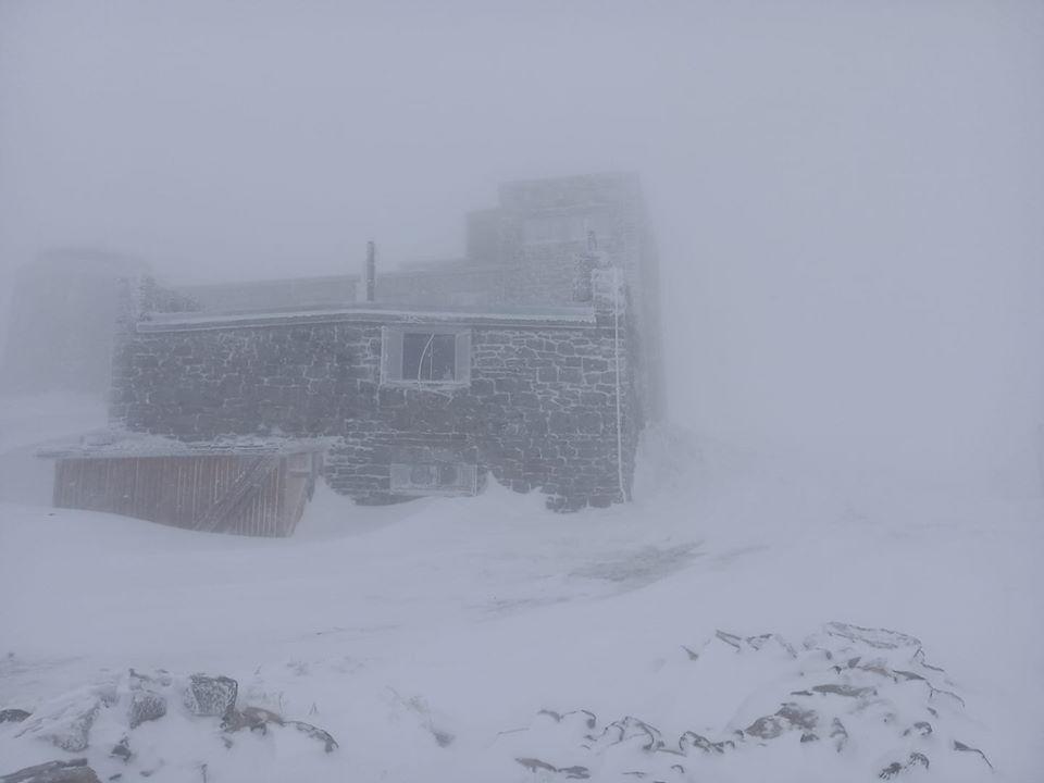 На горе Поп Иван Черногорский 7 мая выпало 15 см снега