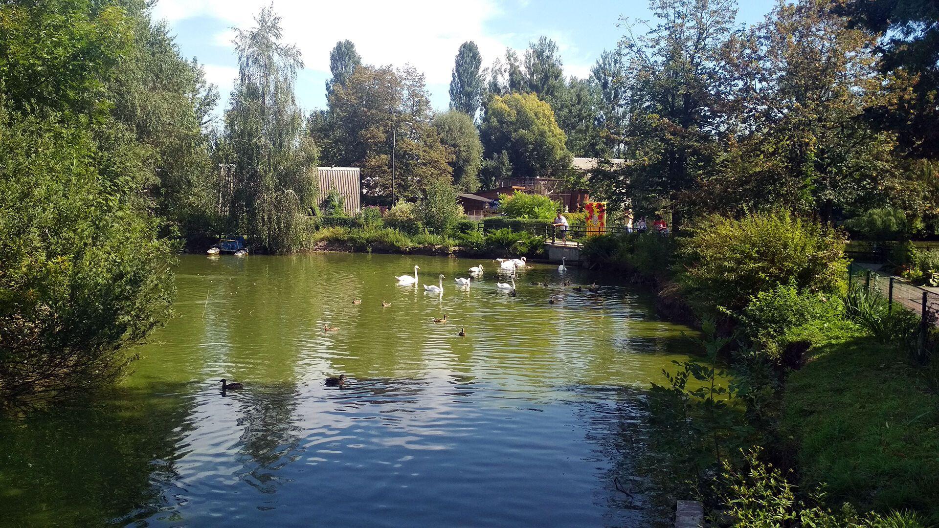 В Луцке откроют зоопарк во время карантина