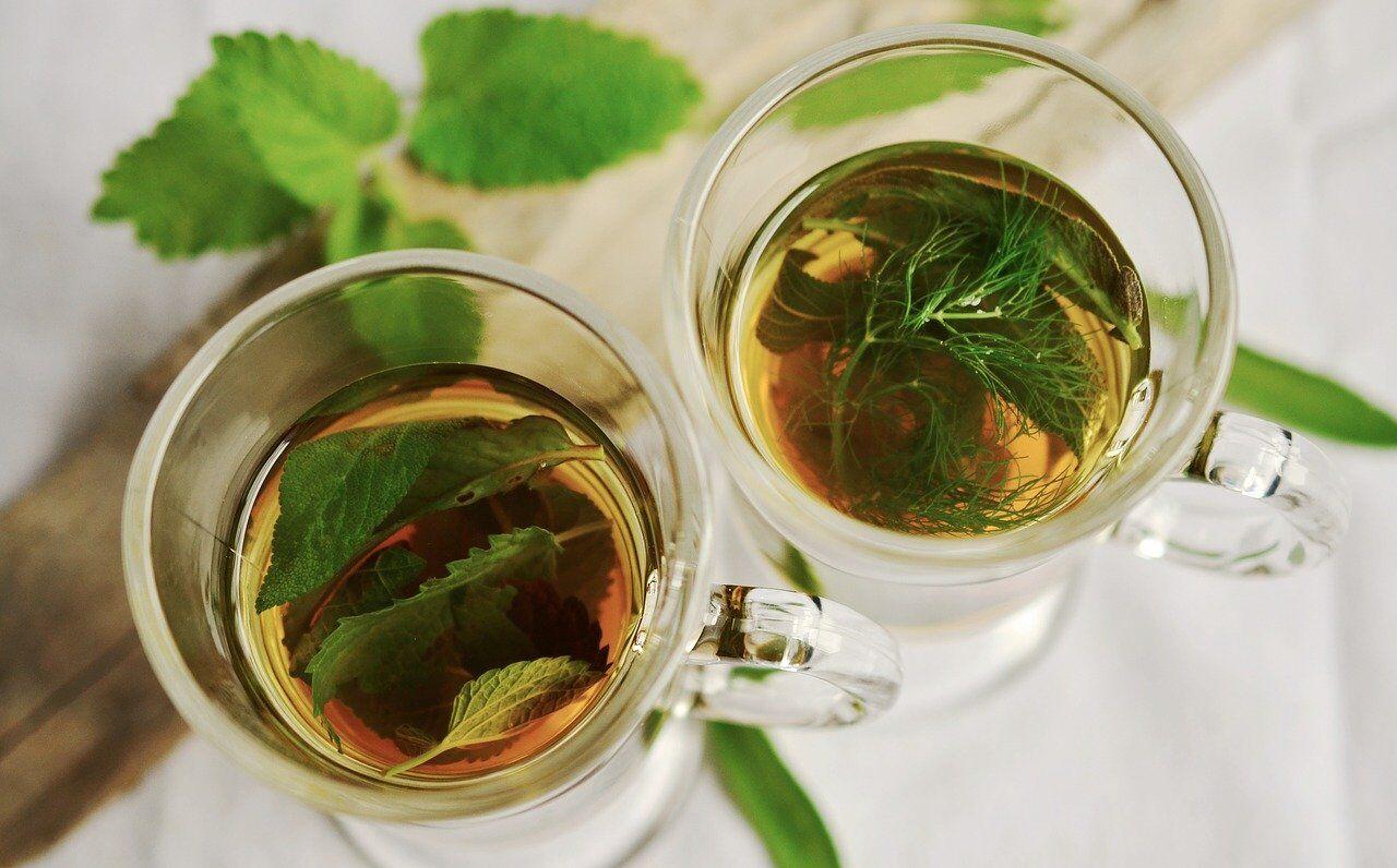 Чай из мелиссы и розмарина охладит в жару