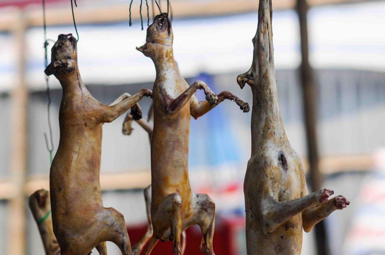 В'єтнамський ринок у Ханої, столиці В'єтнаму