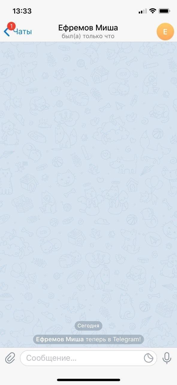 Сім-карту Єфремова використали для входу в Telegram