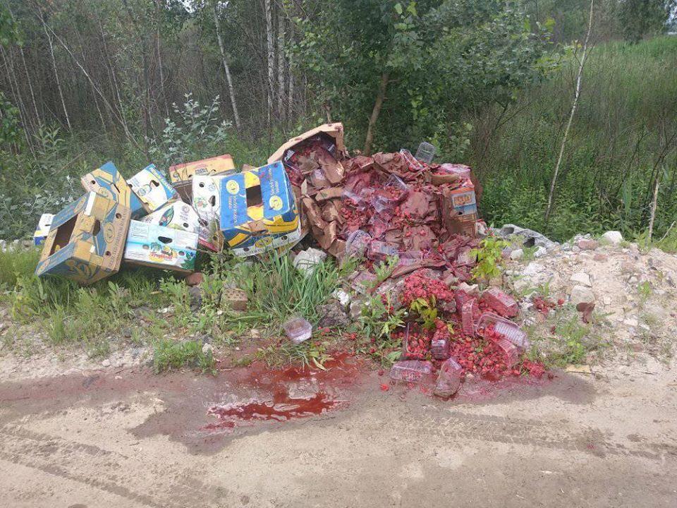 Территорию возле озер на Осокорках превратили в свалку мусора