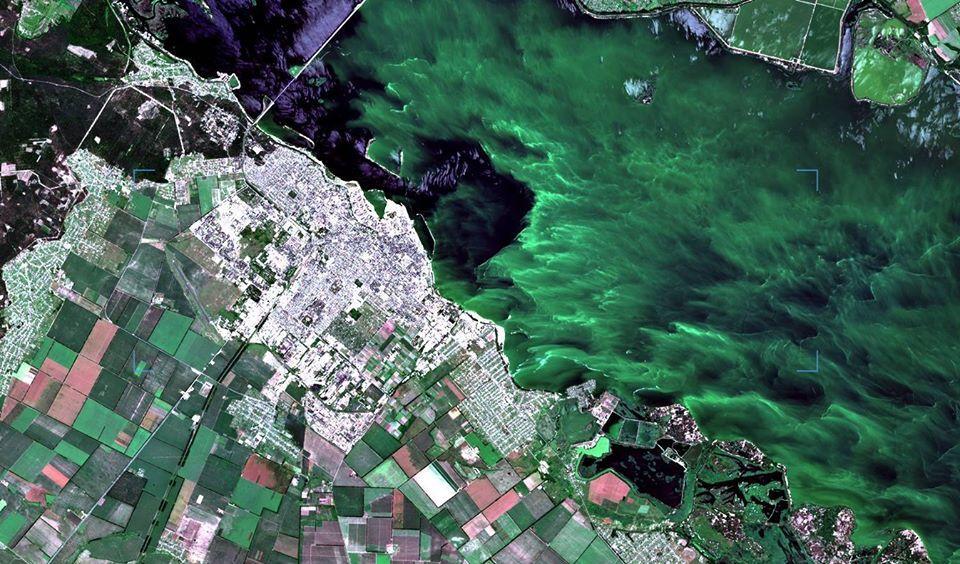 В Днепре зеленая вода