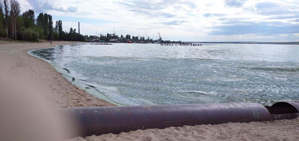 "В Николаеве ""позеленела"" вода на пляже"