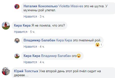 facebook.com/Типичный Днепродзержинск
