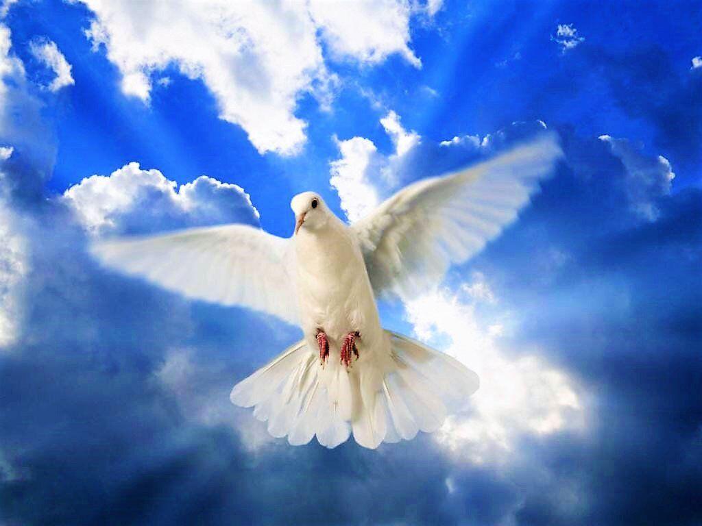 День Святого духа 2020