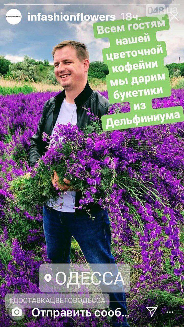 """Под Одессой любители селфи уничтожили уникальное """"фиолетовое поле"""""""