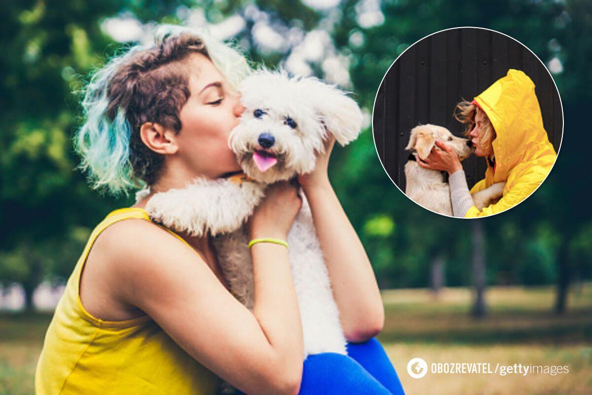 От поцелуев с собаками стоит отказаться