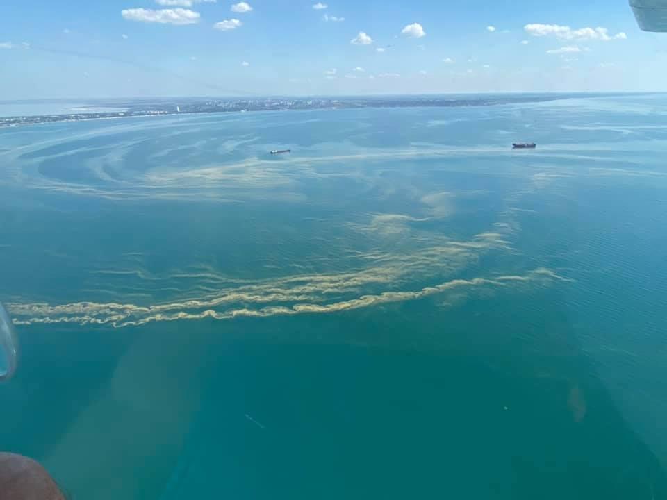 В Одессе позеленело море: экологи предостерегли от купания. Фото и видео