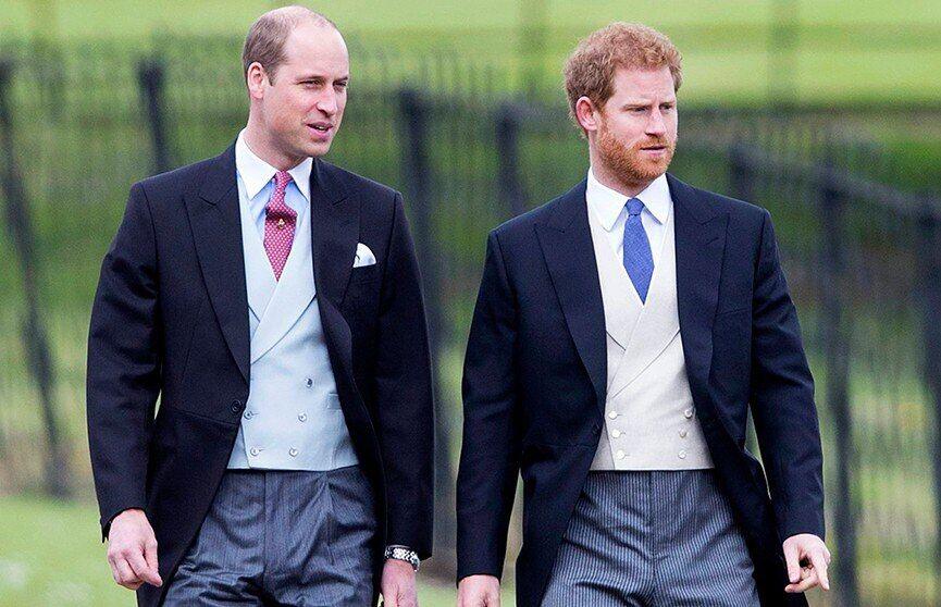 Принц Уильям и принц Гарри (источник – ont.by)