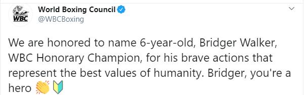 Хлопчик, якому собака розірвала обличчя під час порятунку сестри, став почесним чемпіоном WBC
