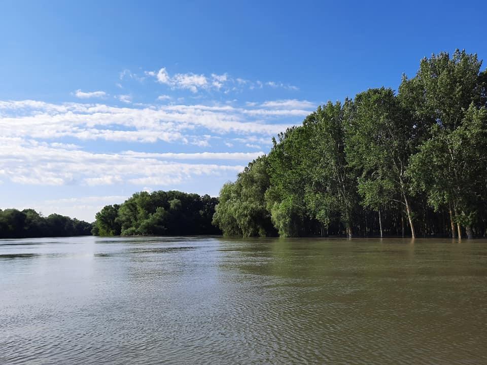 Рівень річок Дністер та Турунчук піднявся на 5-10 см.