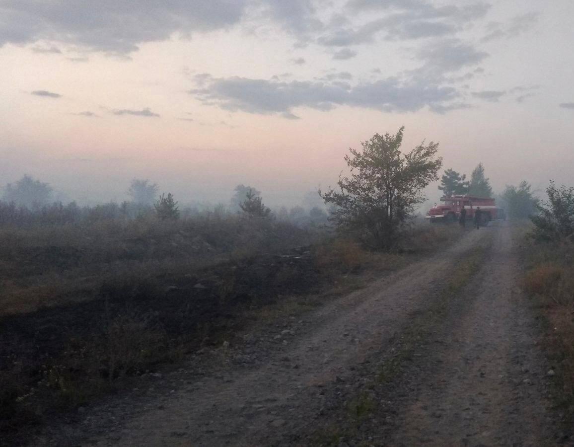 Ліс горів на території Трьохізбенського лісництва