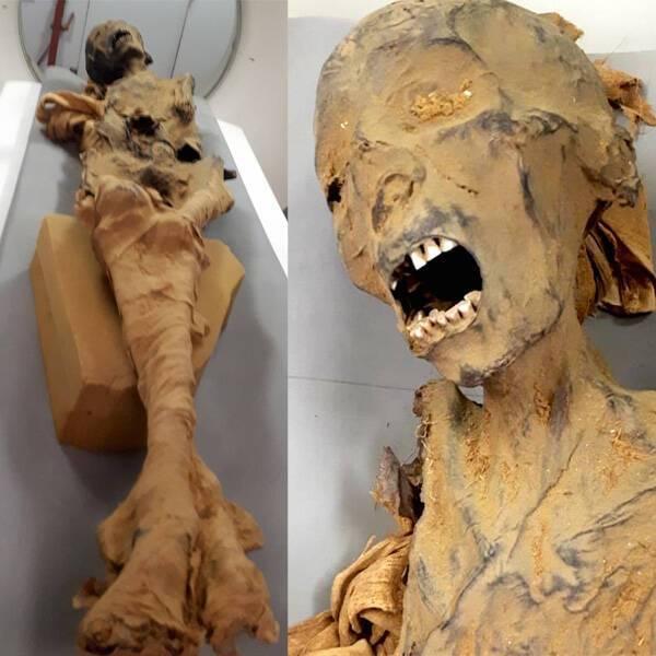 Кричащая мумия из Египта