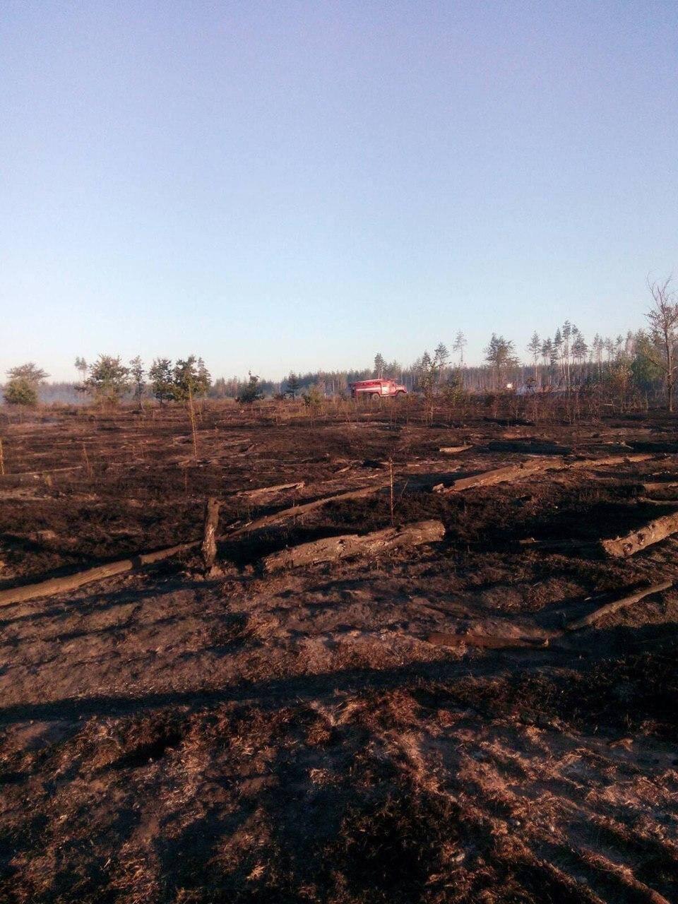 Загрози населеним пунктам внаслідок пожежі не було