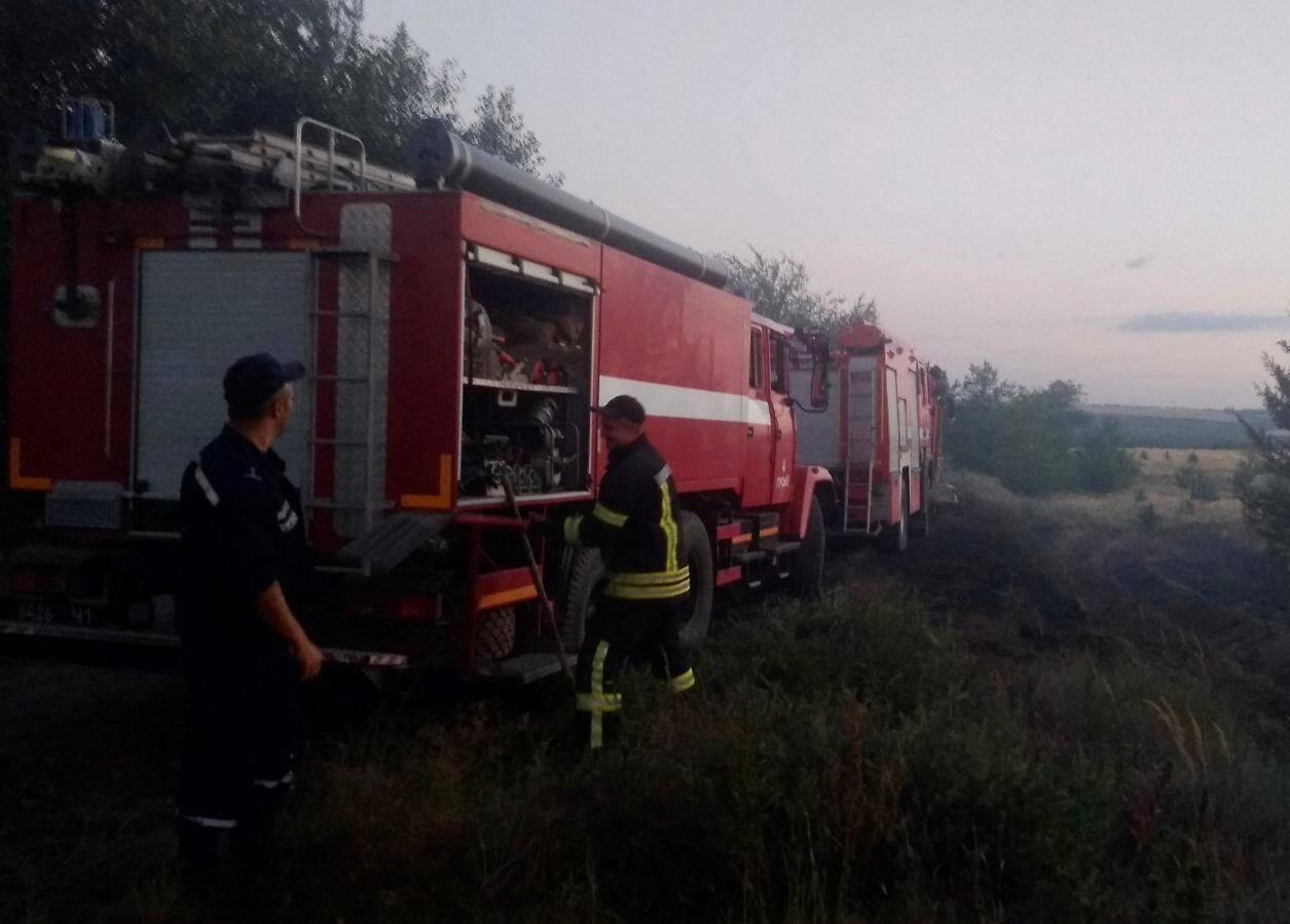 До ліквідації пожежі залучили 252 особи та 51 одиницю техніки