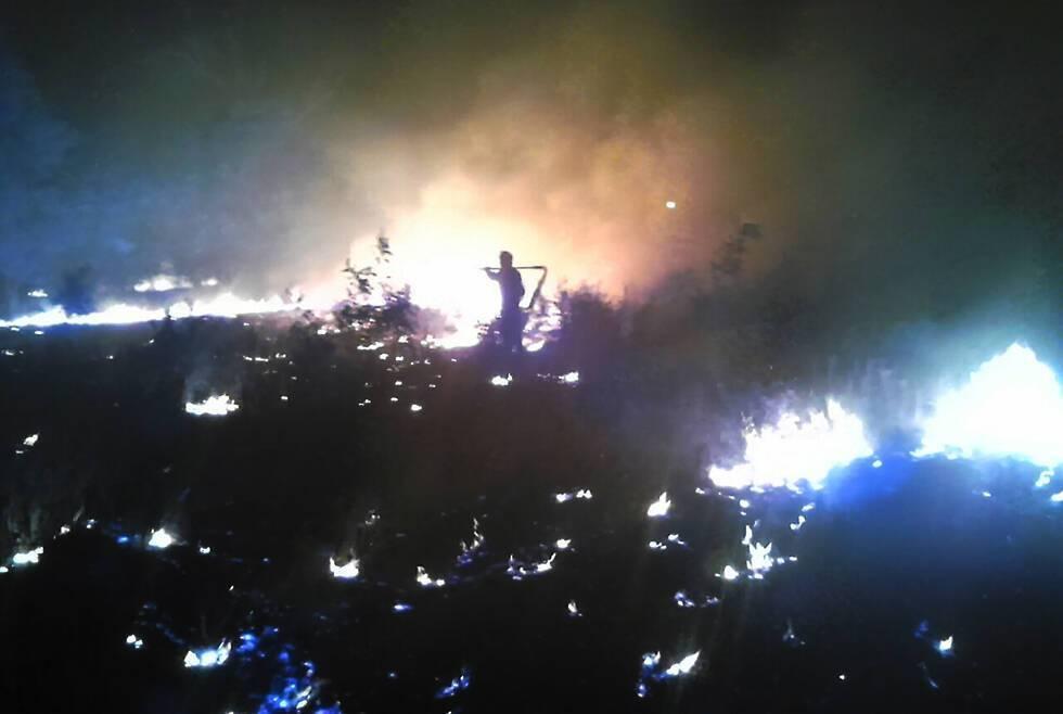 На Дніпропетровщині спалахнула масштабна лісова пожежа