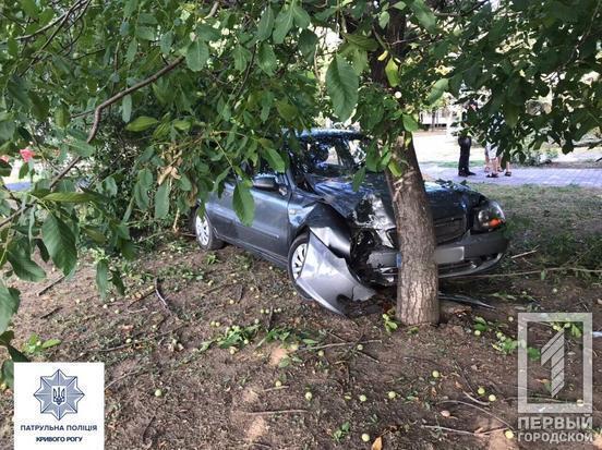 В Кривом Роге у водителя за рулем случился приступ: авто влетело в дерево