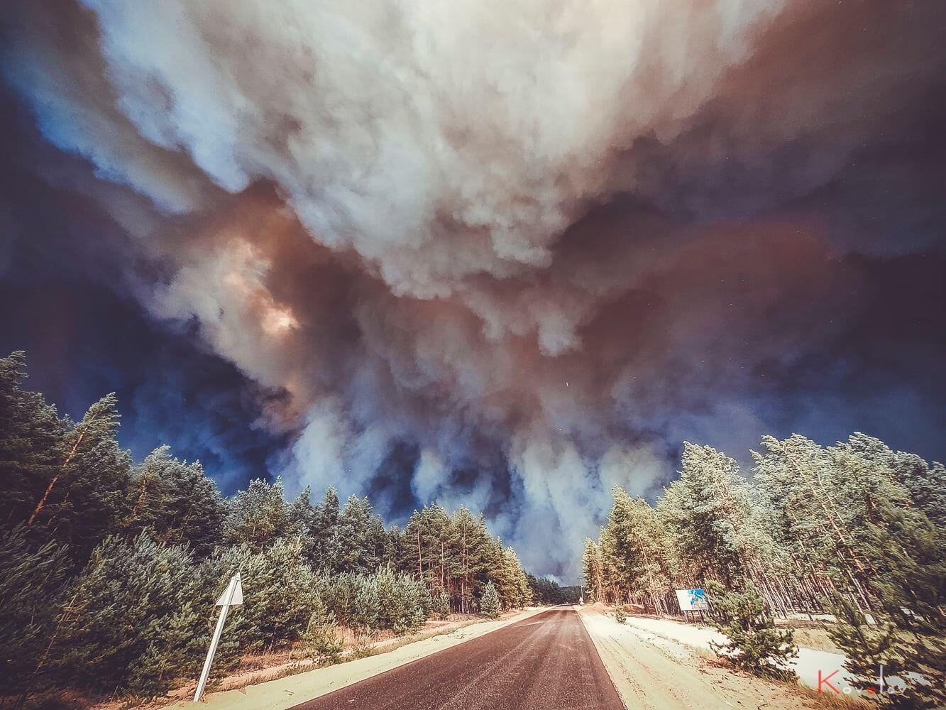 Під Сєвєродонецьком палають десятки гектарів лісів