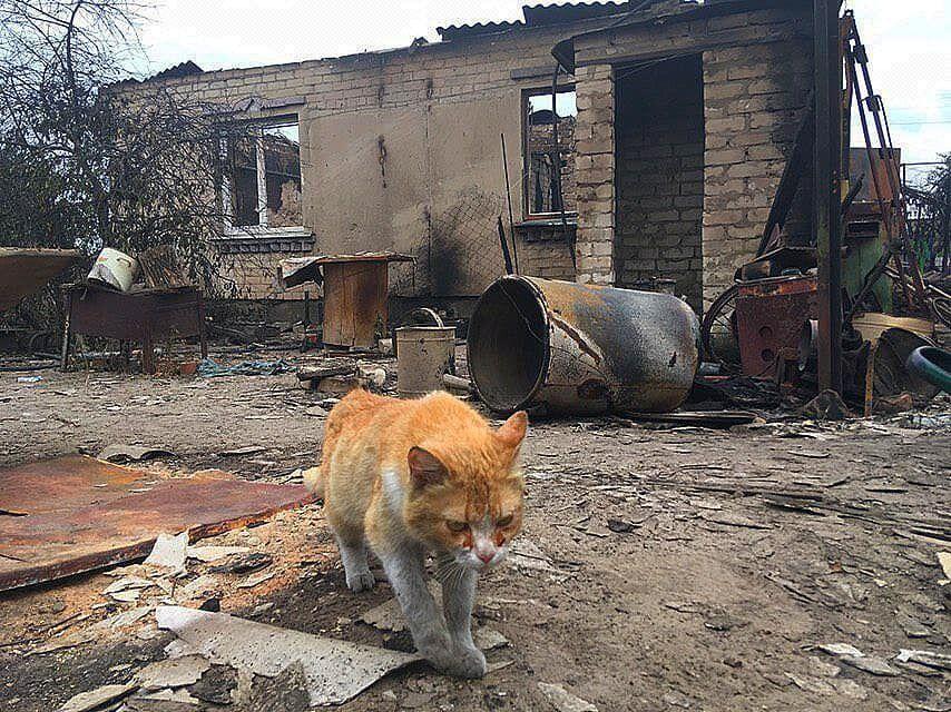 Обгоревший дом после пожара
