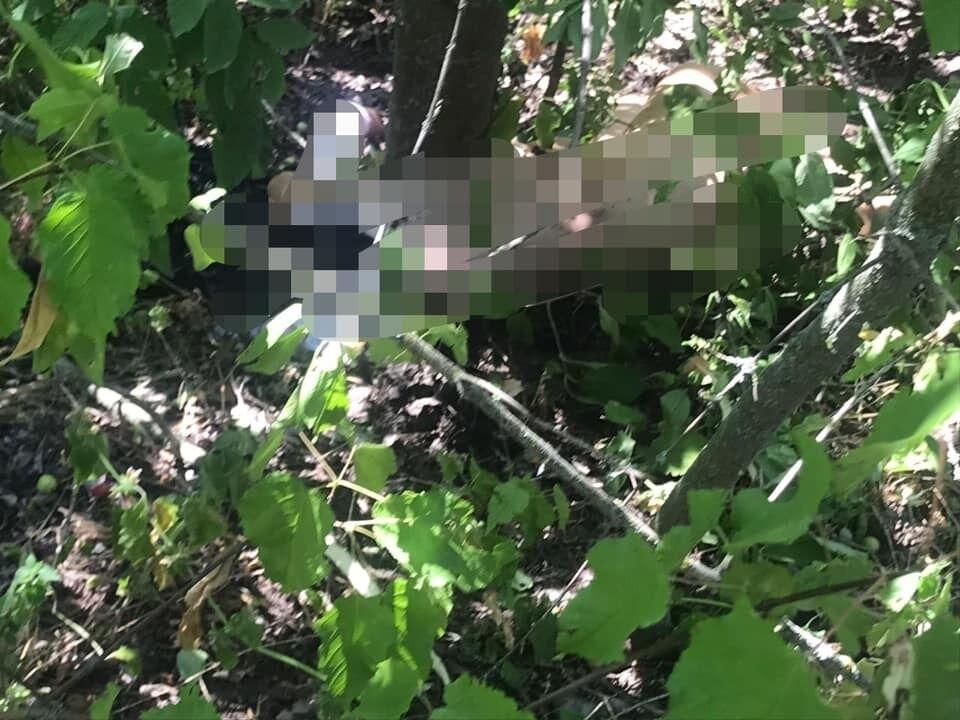 Тіло вбитої на Київщині Софії Недобой