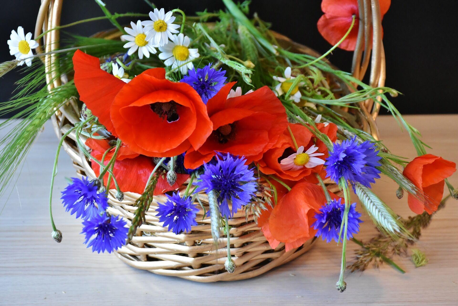 На Маковея в церкви принято святить букеты мака и других цветов и трав