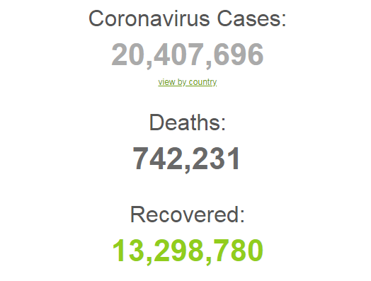 Коронавирусом заразились более 20,4 млн человек в мире.