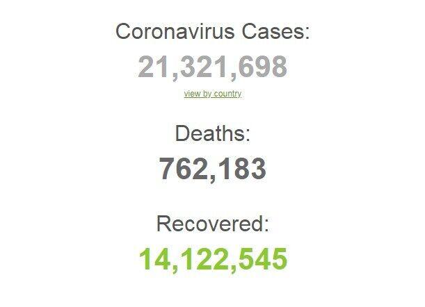 Коронавірусів заразилися понад 21 млн осіб в світі