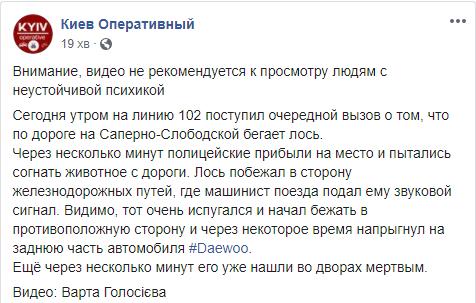 Пост про деталі загибелі лося в Києві