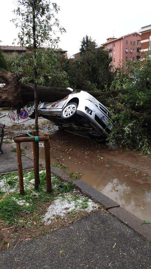 Уничтоженный упавшим деревом автомобиль в Вероне.